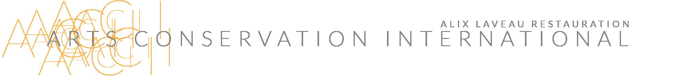 Arts Conservation International